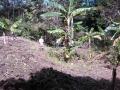 la zahona juan santiago 4.jpg